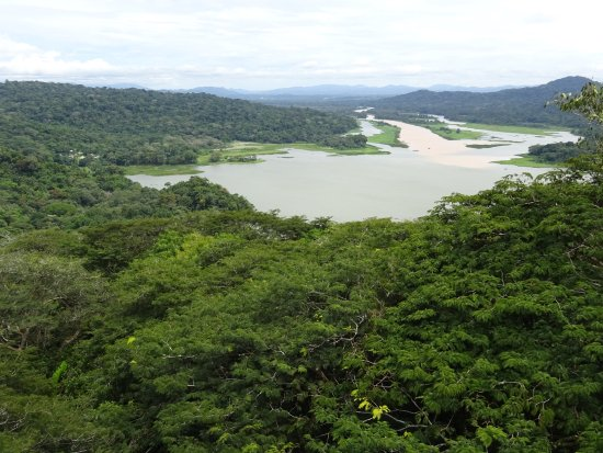 Gamboa Rainforest Resort: Views from Aeriel Tram tour
