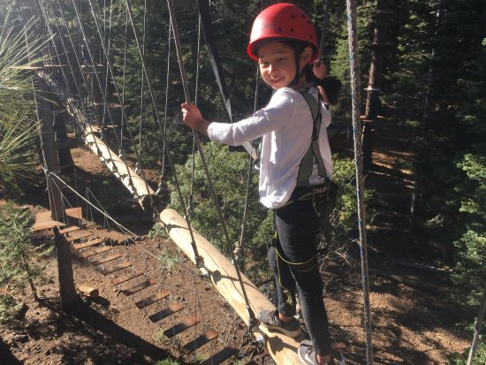 Tahoe Vista Treetop: Awesome Time!
