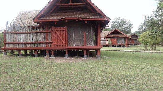 Royal Mara Safari Lodge Image