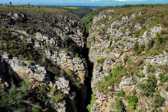 Imagen de Port Elizabeth