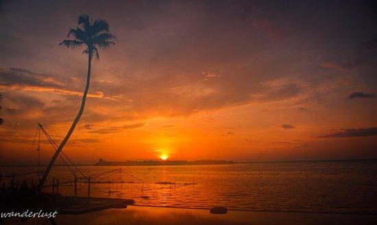 Lemon Tree Vembanad Lake Resort: Sunrise at lemon tree just behind the infinity pool