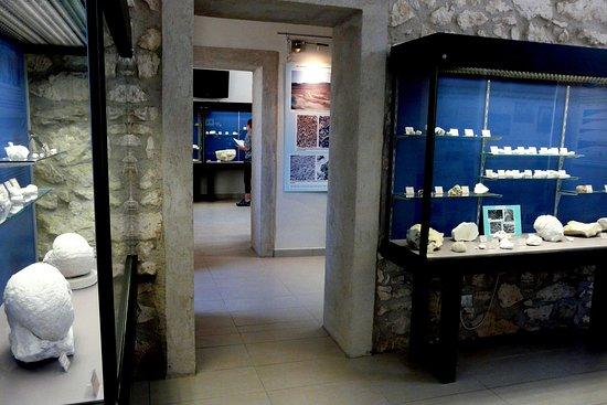 Musée URGONIA octobre 2017
