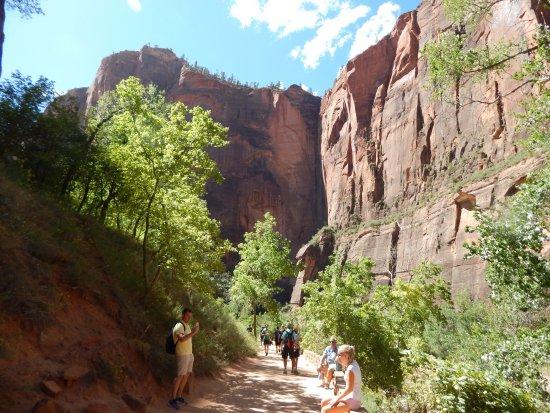Riverside Walk: Easy Trail