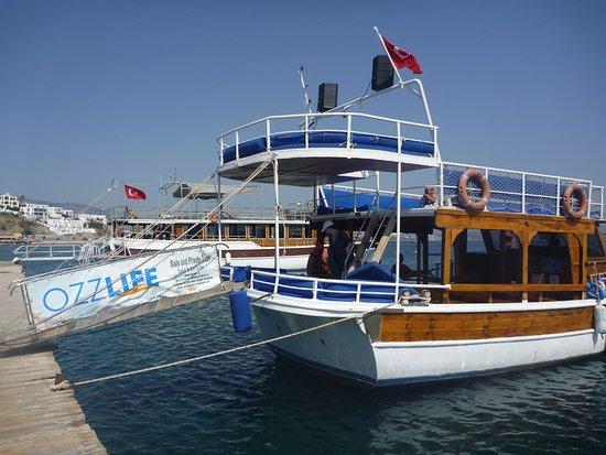 Ozzlife Boat - Picture of Ozzlife Boat, Gumbet - TripAdvisor