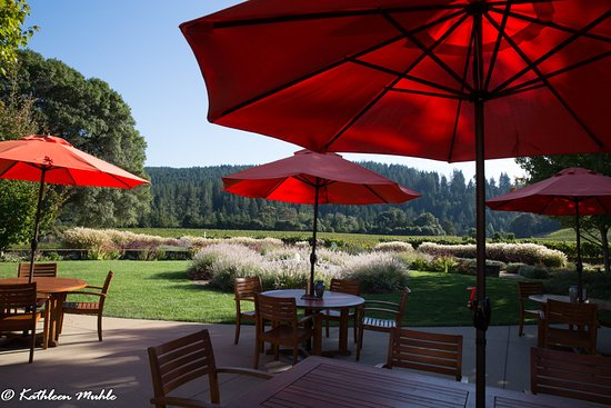 Goldeneye Winery: Patio