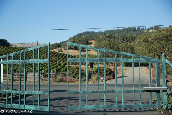 Goldeneye Winery: Front gate along Hwy 128