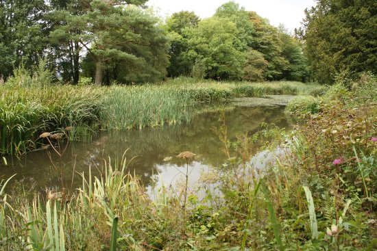 Penrith, UK: The lake near the summer house