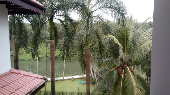Thodupuzha, Indien: View from the room