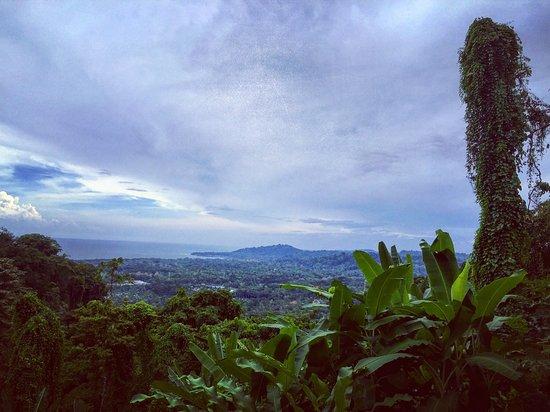 Samasati Retreat & Rainforest Sanctuary: photo0.jpg