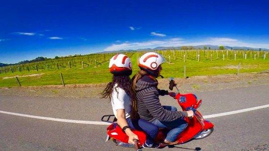 Blenheim, New Zealand: Beatnik Vespa, scooting around the vineyards for hours