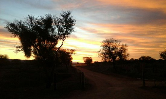 De Zeekoe Guest Farm: Amazing African sunset from the back of the log cabin.