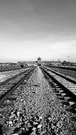 Krakow Trip - Auschwitz Tours : 20171014_154853_large.jpg
