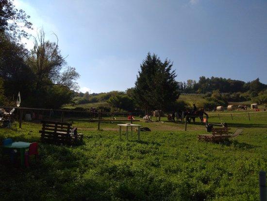 Cevoli di Lari, Italy: Überblick von den Sitzplätzen aus