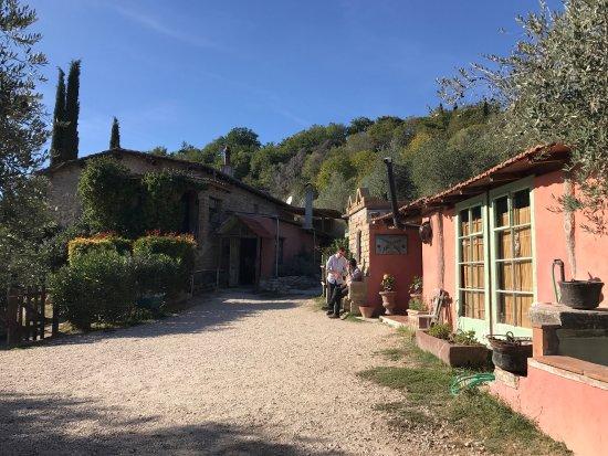 Castelnuovo di Farfa, إيطاليا: Agriturismo Zucchegni