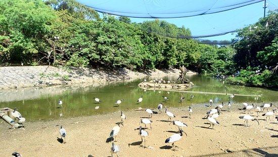 名护Neo自然动植物公园