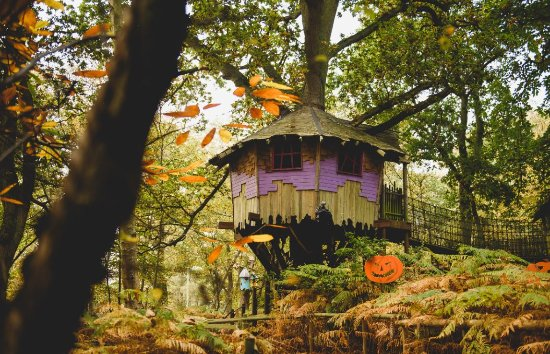 BeWILDerwood Norfolk