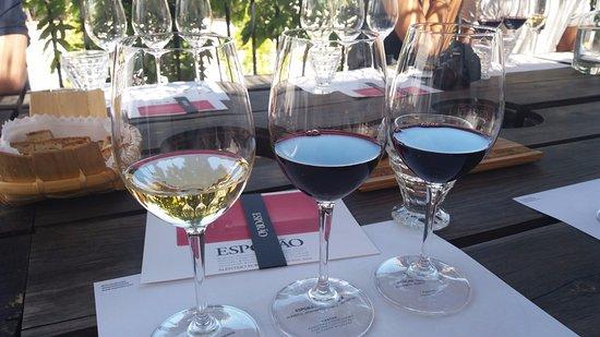 Reguengos de Monsaraz, โปรตุเกส: Degustação de vinhos