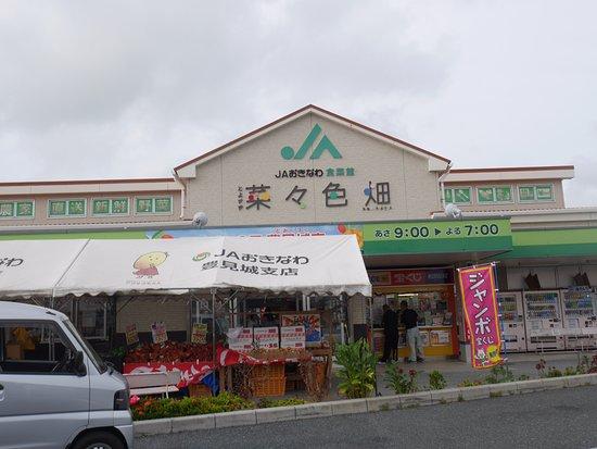 Toyosaki Nanairobatake