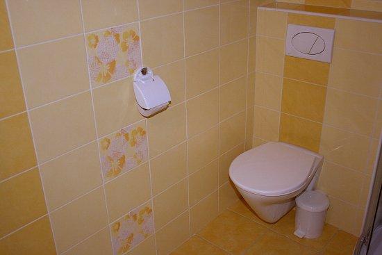 Roznava, Eslovaquia: Kúpeľňa s toaletou na prízemí