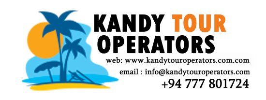Great tour operator - Review of Kandy Tour Operators, Kandy, Sri