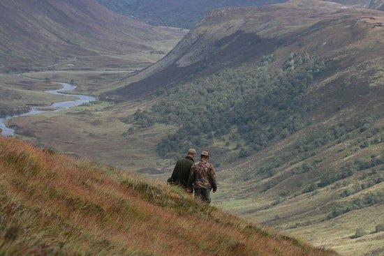 Ardgay, UK: Hiking