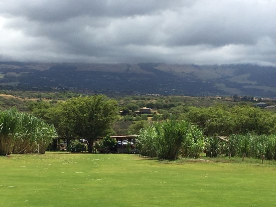 Kula, Χαβάη: View from back of property - they have a large area for events.
