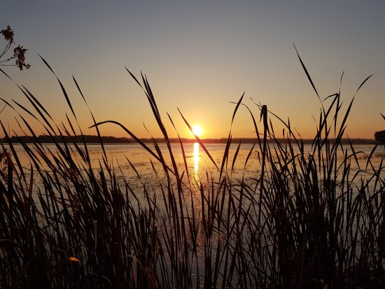 Lindsay, Canadá: A beautiful sunset at Ken Reid Conservation Area looking out to Sturgeon Lake.