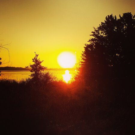Lindsay, Canadá: The sun rises over Sturgeon Lake from Ken Reid Conservation Area.