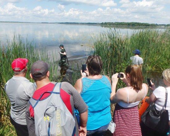 Lindsay, Canada: Visitors enjoy a live turtle release at Ken Reid Conservation Area.