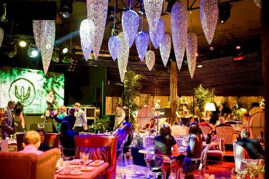 Shakti Terrace : Основной зал ресторана