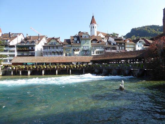 Die Aare in Thun