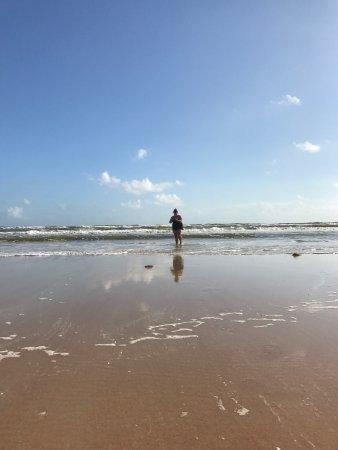 奧蒙德海灘張圖片