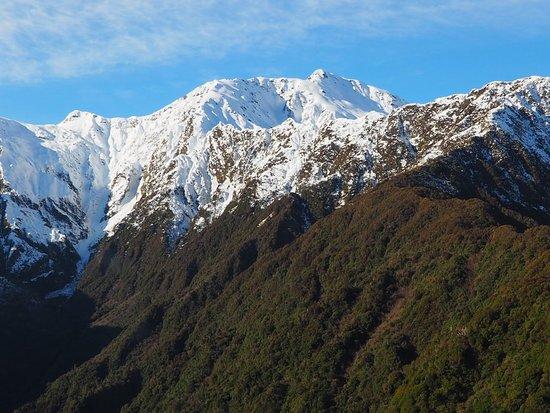 Fox Glacier, Nueva Zelanda: View from the flight