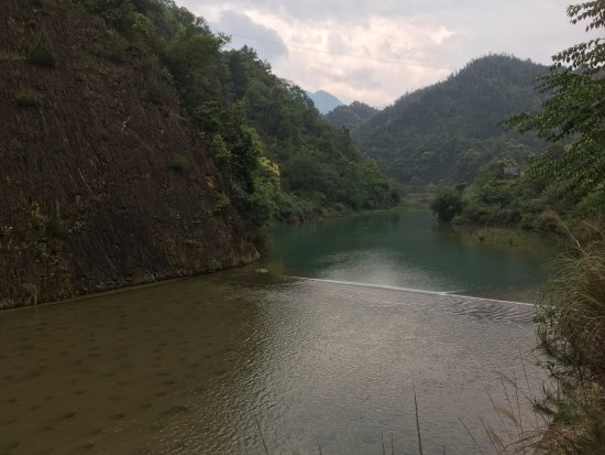 Guangxi Guilin Forest Park: 沉醉在花草樹木林區中
