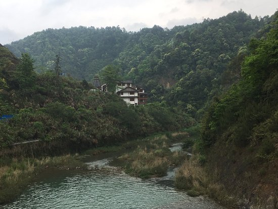 Guangxi Guilin Forest Park : 沉醉在花草樹木林區中