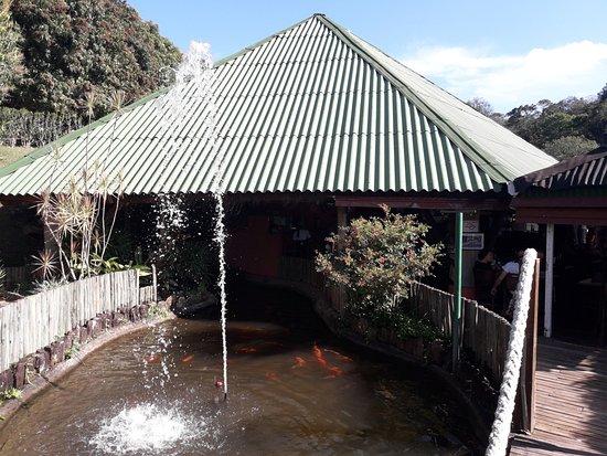 Igaratá, SP: lago de carpas do restaurante