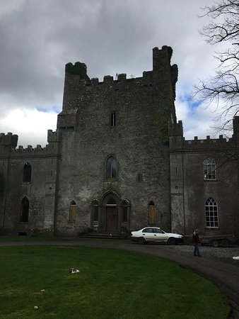 Roscrea, Irland: We loved this place- including Pixie his barn cat!
