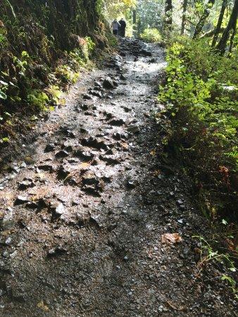 Sublimity, Oregón: Rocky incline - Medium grade
