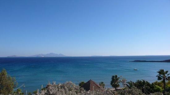 Paradise Beach: Panoramica