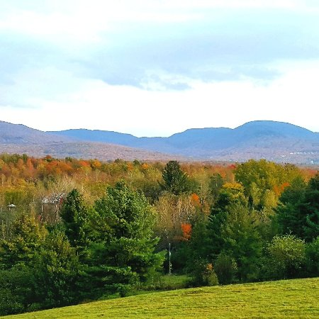 Vignoble  Domaine Bresee  et ses couleurs  d automne (Sutton)