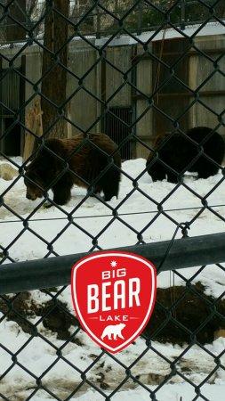Big Bear City Foto