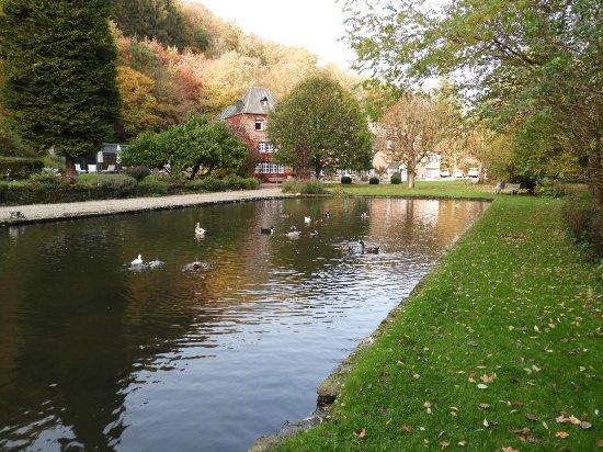 Noirefontaine, Belgia: l'hôtel vu de l'étang