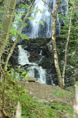 Pleasant Bay, Kanada: The waterfall we were looking for!