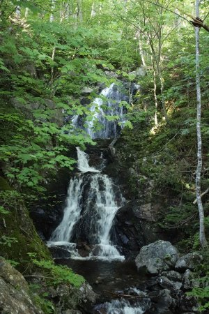 Corney Brook Trail: I will never forget this beautiful waterfall!