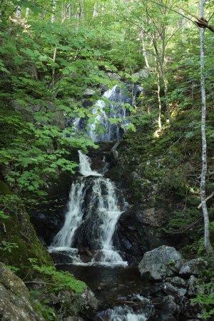 Pleasant Bay, Kanada: I will never forget this beautiful waterfall!