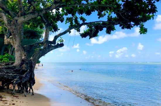 Kauai Photo Tours: One of our north Kauai locations