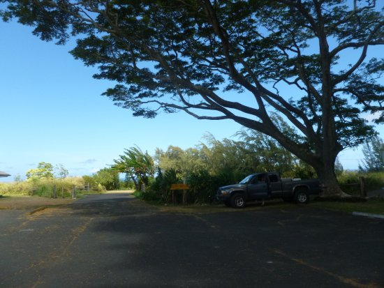 Kapaau, HI: Back there, that's the entrance to the ball/disc golf course area