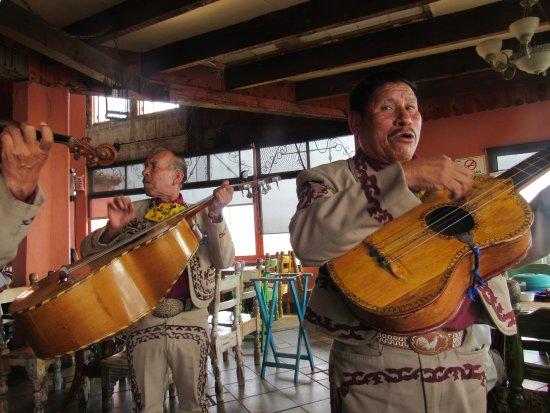 Puerto Nuevo, Mexico: Mariachis