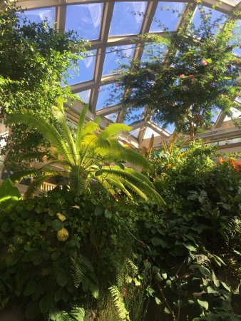 Denver Botanic Gardens Co Top Tips Before You Go With Photos Tripadvisor