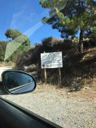 Anatoli, Yunanistan: photo0.jpg